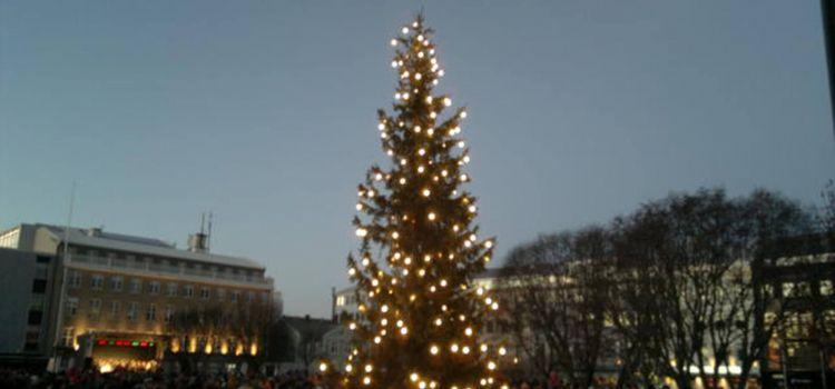 Oslo Christmas Tree Lighting This Sunday